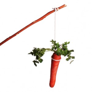 carrot-and-stick-300x300