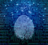 onlinefirngerprint