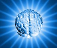 shiny-brain-1150907-639x532