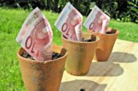 seed-funding