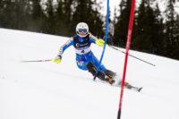 Slalom, Agility